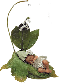 gnome baby bebe