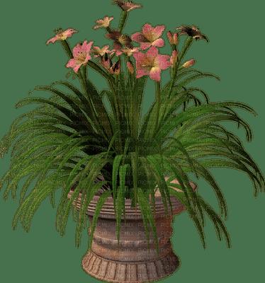 garden three katrin