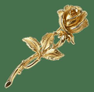 kulta, gold, ruusu, rose, fleur