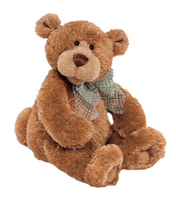teddy bear toy  deco tube sweet