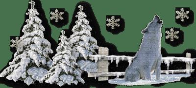 chantalmi  hiver winter neige snow noël sapin loup paysage déc