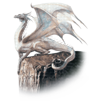 dragon, fantaisie, blanc, foudre, pierre, mer, paysage,Pelageya