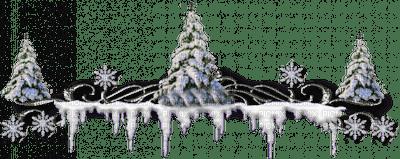 Sapins en neige