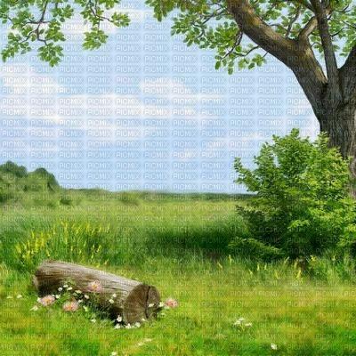 Salomelinda fond nature  !