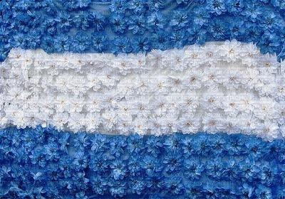 BADERA ARGENTINA