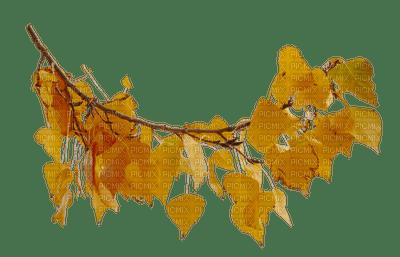 autumn leaves_automne feuille__Blue DREAM 70