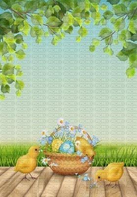 background fond easter ostern Pâques paques spring printemps frühling primavera весна wiosna flower fleur blossom bloom blüte fleurs blumen garden jardin paysage landscape image duck chick küken bird oiseaux