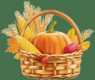 basket corn pumpkin citrouille kürbis garden jardin autumn automne herbst tube  leaves deco  feuillage feuilles  korb mais panier