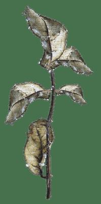 set beige-blad-leaf-deco-minou52