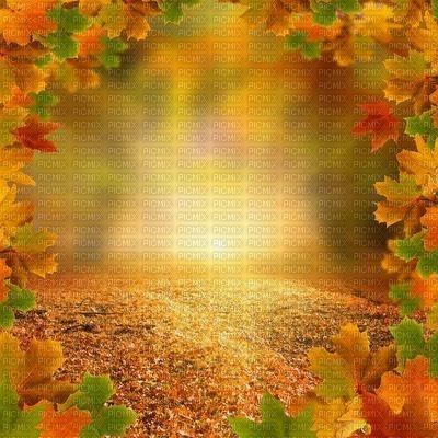 fond autumn automne