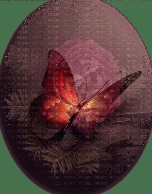 patymirabelle papillon