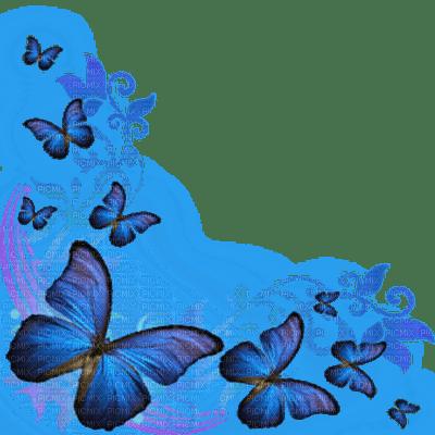 blue butterflies corner
