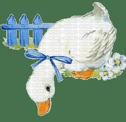 Gans goose oie