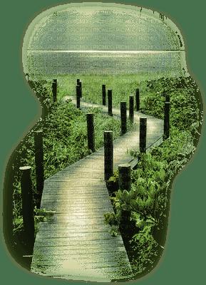 pathway wooden sentier en bois