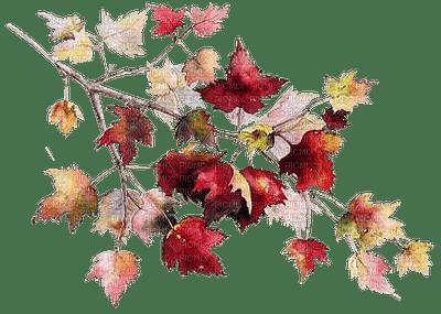 autumn decoration branch leaves__Blue DREAM 70