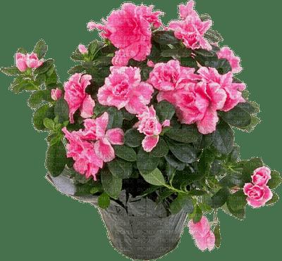 Kaz_Creations Flowers Plant Deco Vase