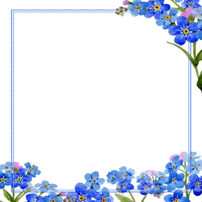 frame blue flower forget me not cadre bleu fleur ne m'oublie pas