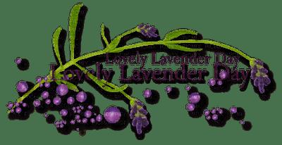 loly33 texte lavender