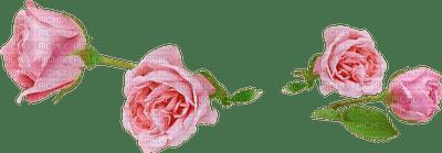 PINK ROSE S DECO