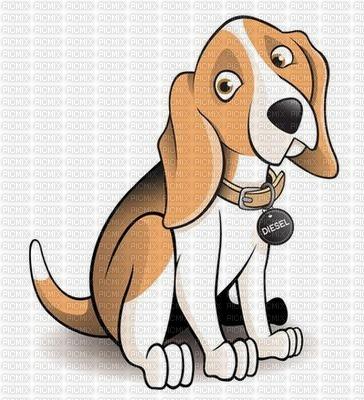maj beagle