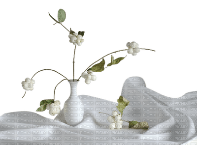 flower fleur blossom blumen deco tube spring printemps fleurs table tisch room chambre furniture blanc white vase