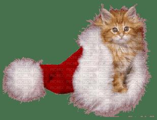 Christmas 50