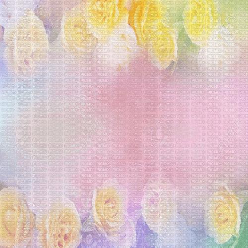 roses frame  cadre rose