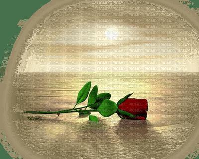 Kaz_Creations Deco Flowers Flower Colours Paysage Scenery