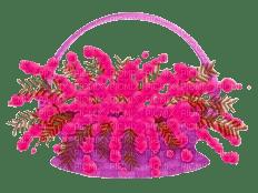 flores magenta sheena