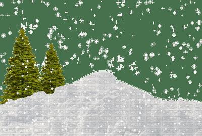 chantalmi hiver winter sapin fir snow neige