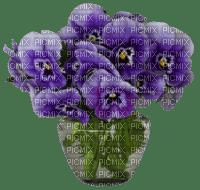 Bouquet de pensées