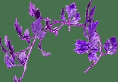 Branche.branch.Plants.purple.Victoriabea