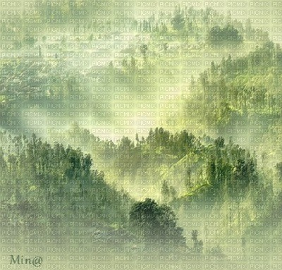 minou-green-vert-verde-grön-background-fond-sfondo-bakgrund