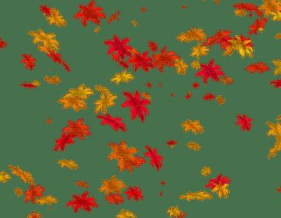 Kaz_Creations Flowers Flower Autumn