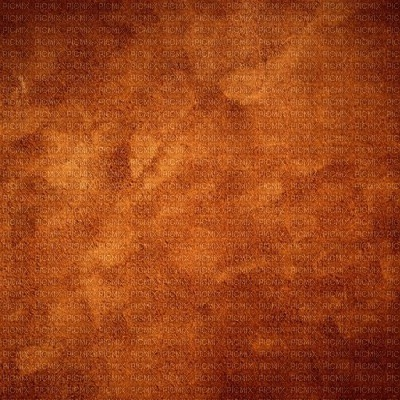 orange fond  bg