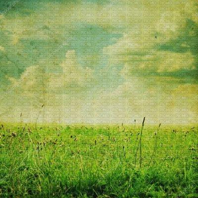 nature bg fond vert