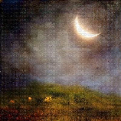background halloween_fond_evening_ night__BlueDREAM 70