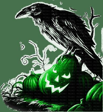 soave deco bird halloween pumpkin black