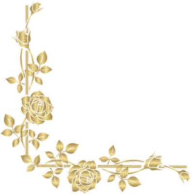 cadre or rose gold border