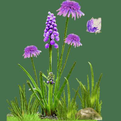 cecily-fleurs violettes