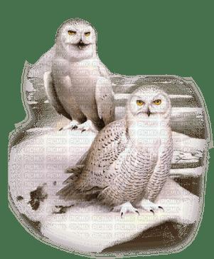 chantalmi  hiver winter neige snow noël déco hibou oiseau