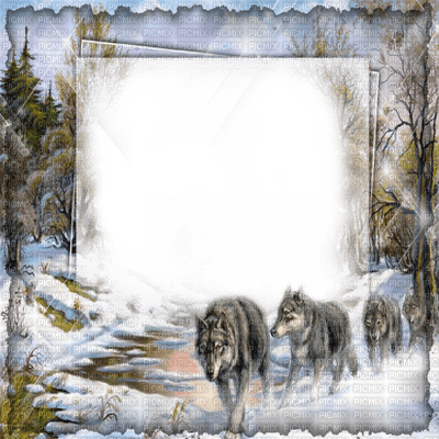 winter forest wolf frame CADRE HIVER LOUP