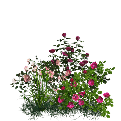 Kaz_Creations Garden Deco Flowers Grass