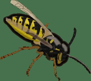 Kaz_Creations Cute Cartoon Love Bees Bee Wasp