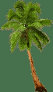 Kathleen Reynolds Beach Summer Palm Tree
