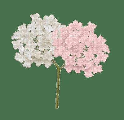Fleur-flower-Hortensia
