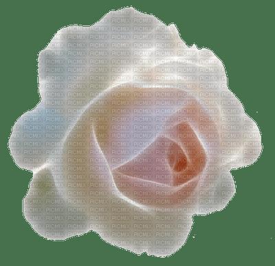 Image Encre Couleur Anniversaire Mariage Texture Fleur Rose Edited