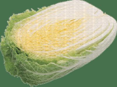 gemüse vegetable