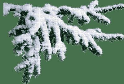 patymirabelle  hiver
