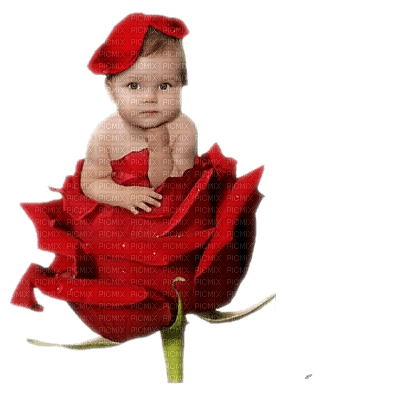baby on rose red bebe rouge rose